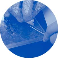 nw PE100 microscope slide preparation blue duotone circle